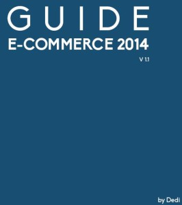 guide ecommerce 2014